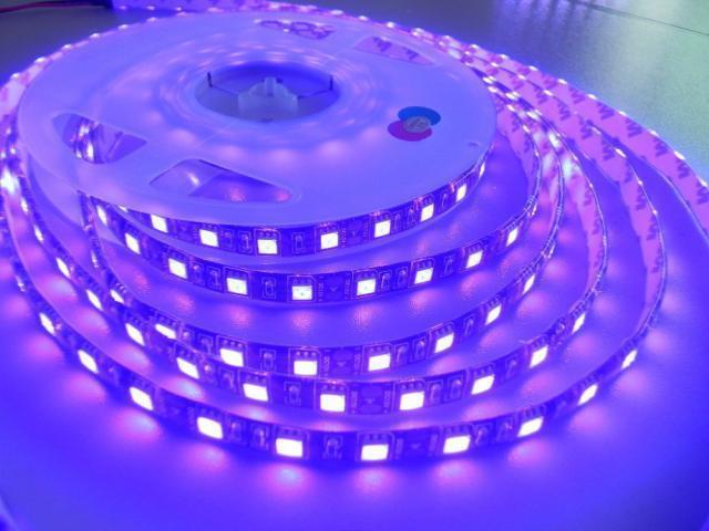 LED21 LED pásek UV 2,5m 60x2835 6W/m, ultrafialový